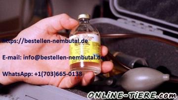Biete Nembutal, Pentobarbital, Kaufen nembutal, Bestellen Nembutal Online